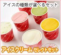 アイスクリームセレクトセット